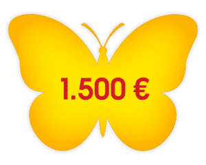 Schmetterling mit Spendenbetrag