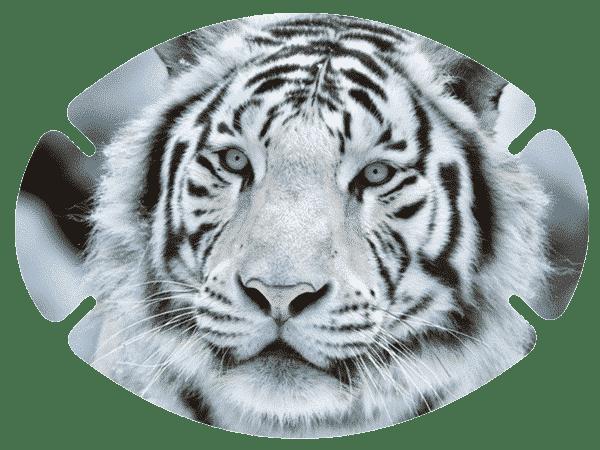 augenpflaster-mix-motiv-tiger